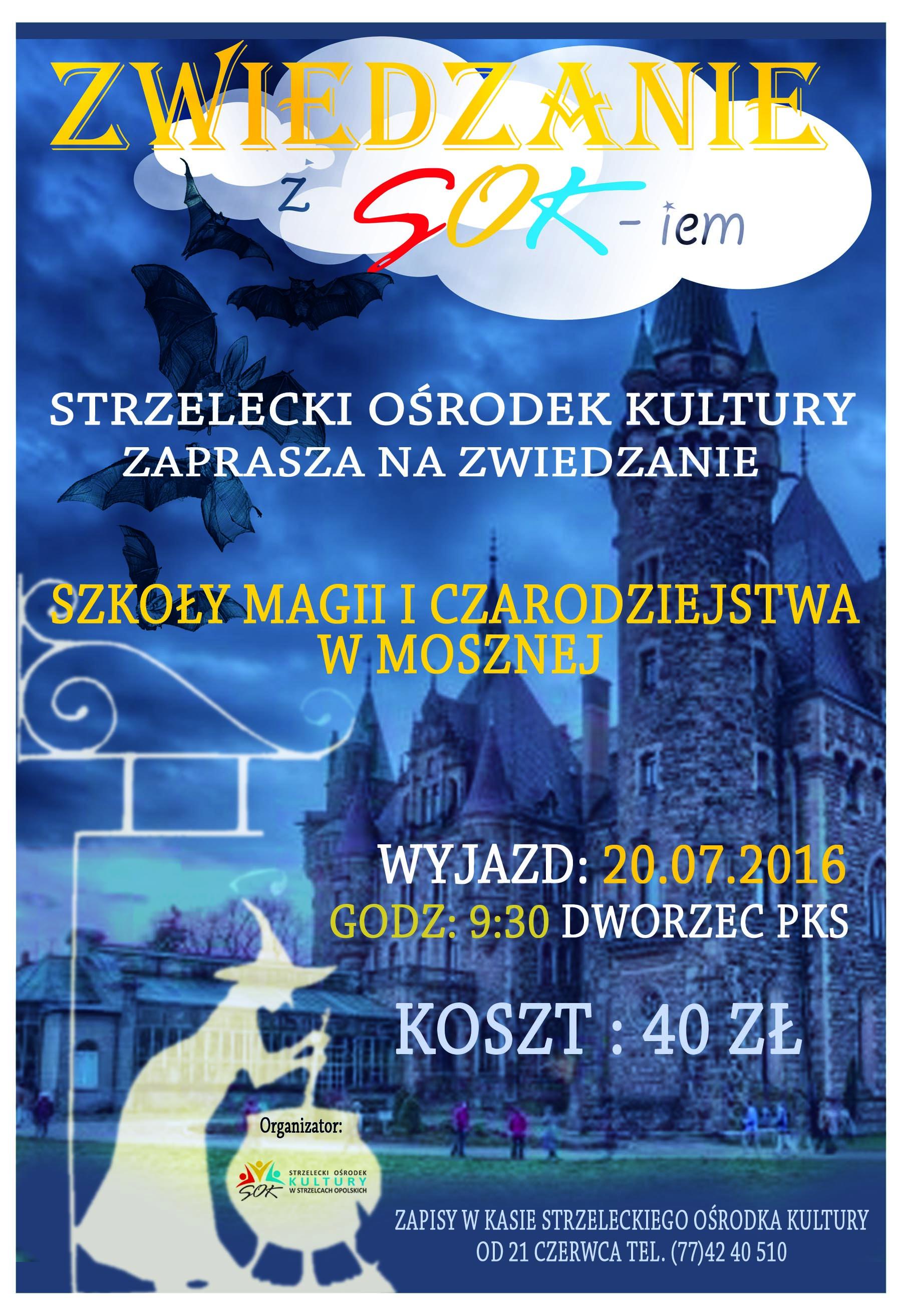 http://www.sok.strzelceopolskie.pl/files/docs/zamek-magii.jpg