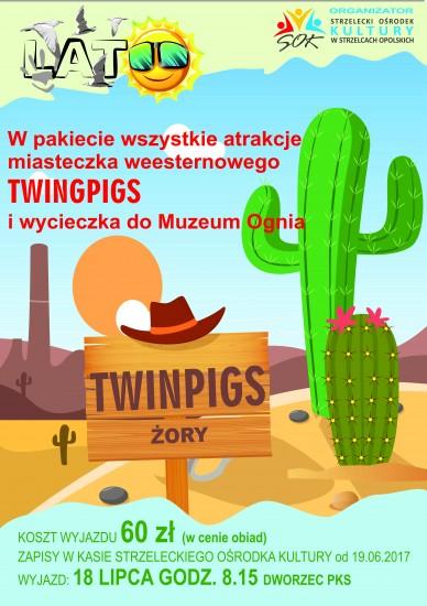 http://www.sok.strzelceopolskie.pl/images/photo/twinpigs_plakat.jpg